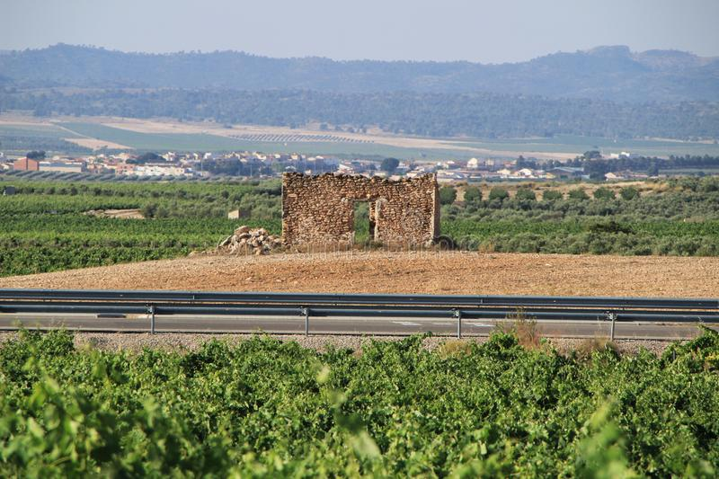 Old ruined stone house surrounded by vineyards royalty free stock image