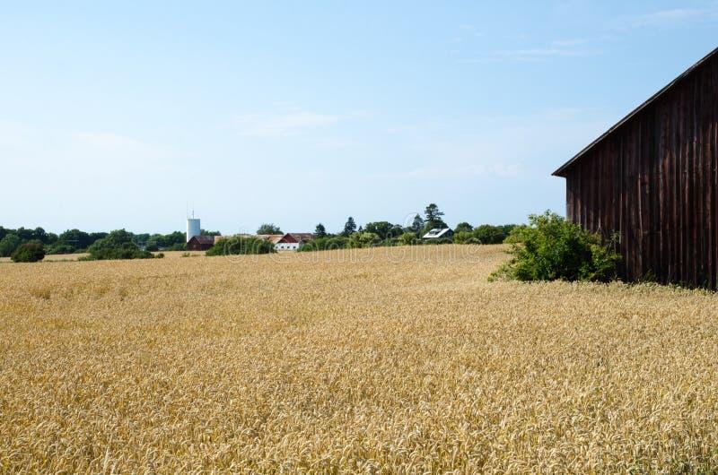 Download Old rural landscape stock photo. Image of rustic, building - 58951220