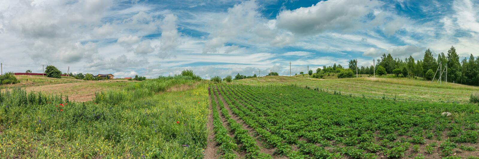 Old rural landscape. panoramic view of private farmland. Under a cloudy sky royalty free stock photo