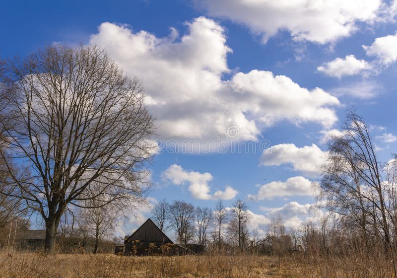 Old rural rustic wooden house against the blue sky and yellow autumn spring grass royalty free stock image