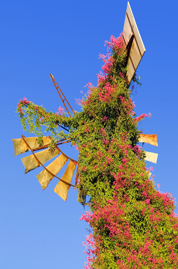 Download Old Rusted Broken Windmill stock photo. Image of flower - 2340304
