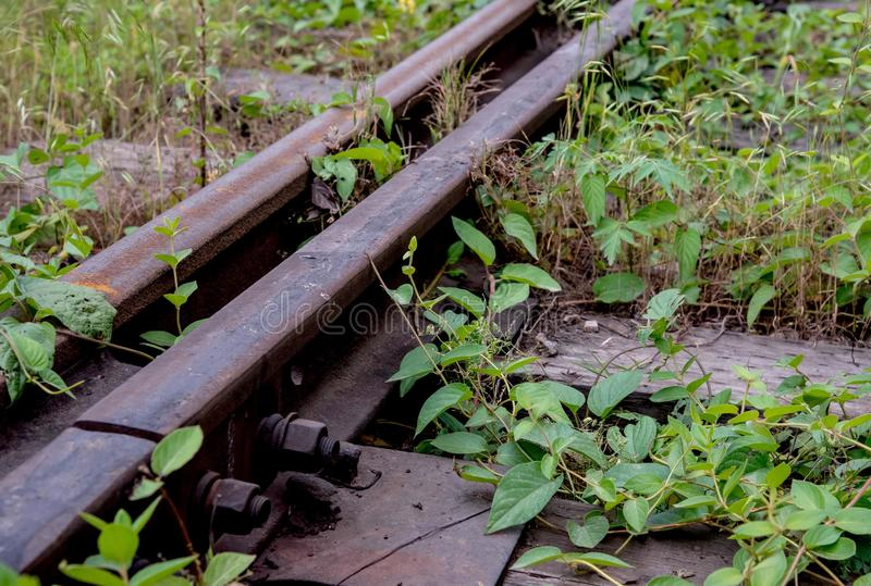 Old rusted railway track stock photo