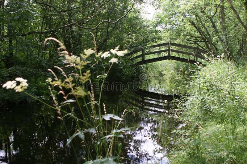 Old Rustic Arch Bridge royalty free stock photo