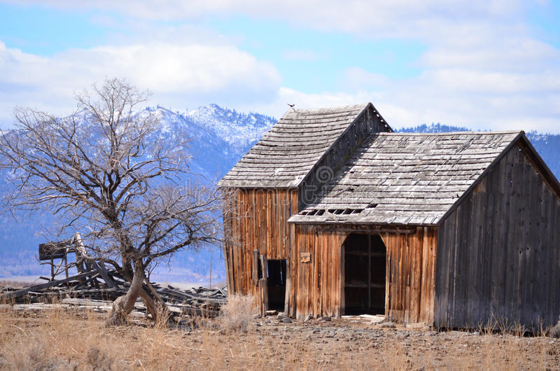 Download Old rustic barn stock photo. Image of landscape, nest - 24000214