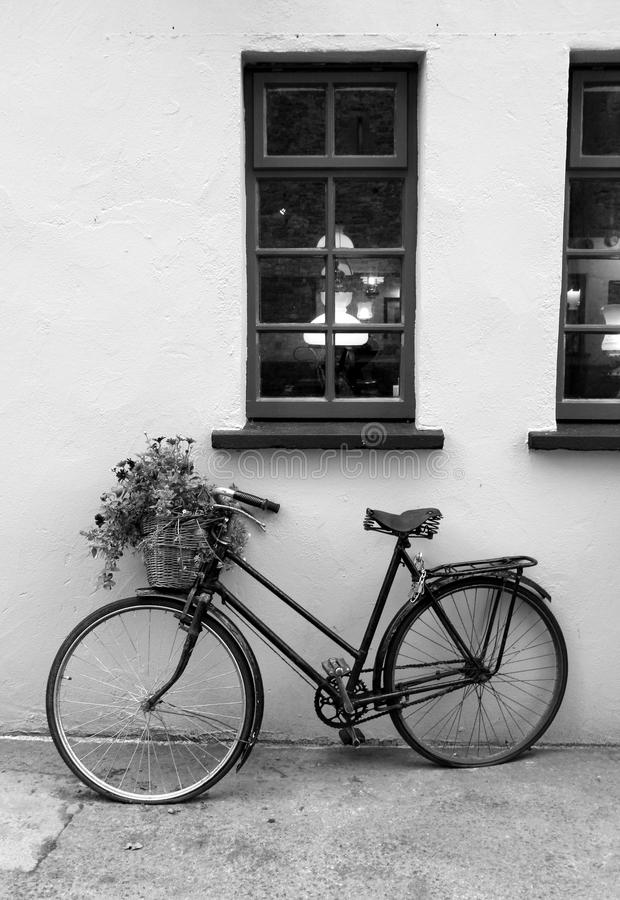Download old rustic bike with flowers in basket leaning against wall stock photo image of