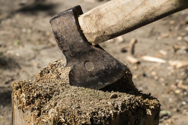 Old rusty ax stuck in a dry wooden log stock images