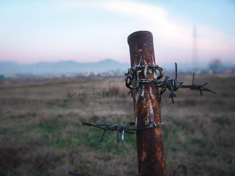 Old Rusty Barbed wire pole in a grass field stock image
