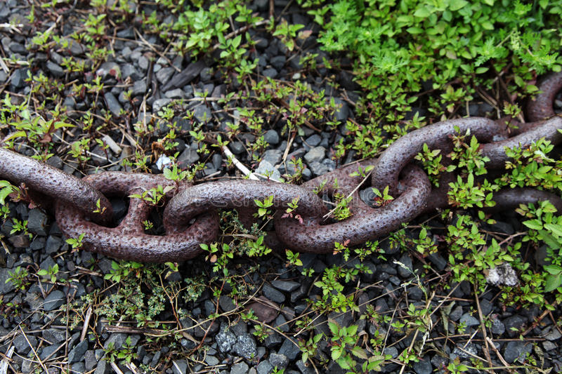Download Old rusty chain stock photo. Image of grass, background - 16189672