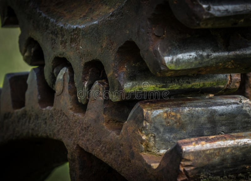The old and rusty gear in sunlight.  stock photo