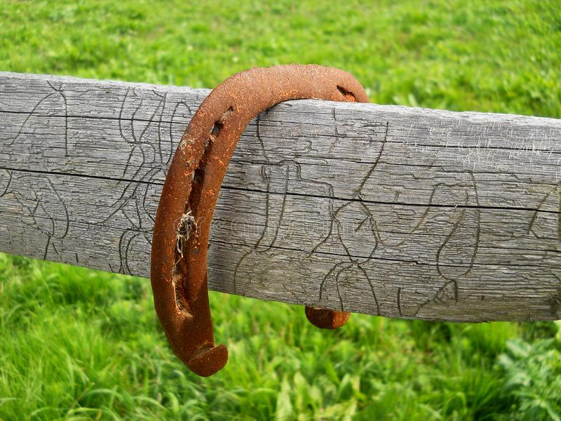 Old rusty horseshoe on wooden fence royalty free stock images