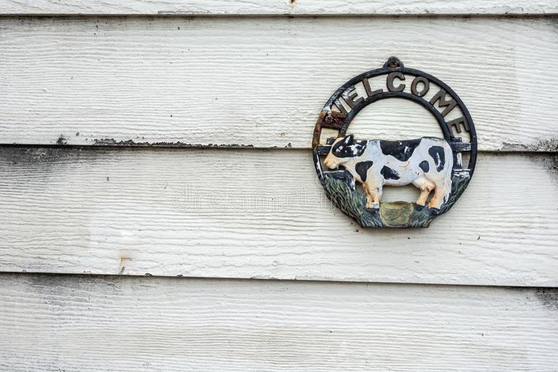 Old rusty metal cow welcome sign hanging on white wood background. royalty free stock photos