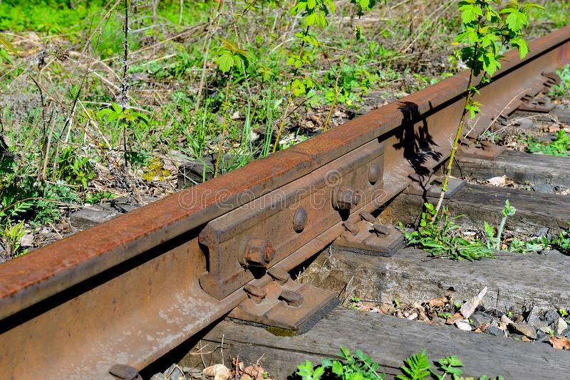 Old rusty rails of an abandoned railway in forest. Old rusty rails of an abandoned railway. Rails overgrown with grass, illuminated by the sun. Concept of stock photography