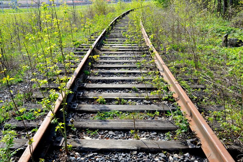 Old rusty rails of an abandoned railway. View into the distance. Rails overgrown with grass, bushes. Concept of abandonment, the victory of nature over stock image