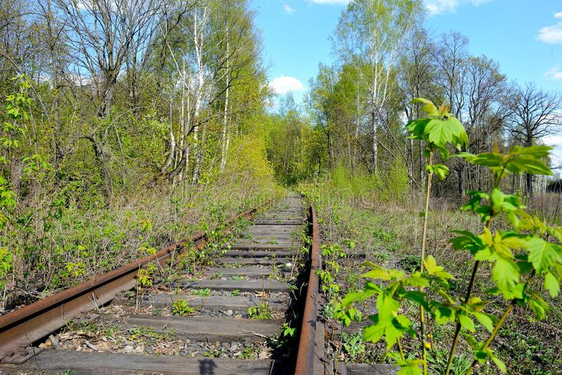 Old rusty rails of an abandoned railway. View into the distance. Rails overgrown with grass, bushes. Concept of abandonment, the victory of nature over stock photos