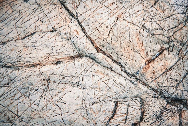 Old scraped prehistoric limestone royalty free stock photo