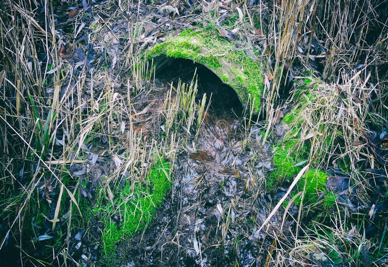 Old sewer pipe in nature royalty free stock photo