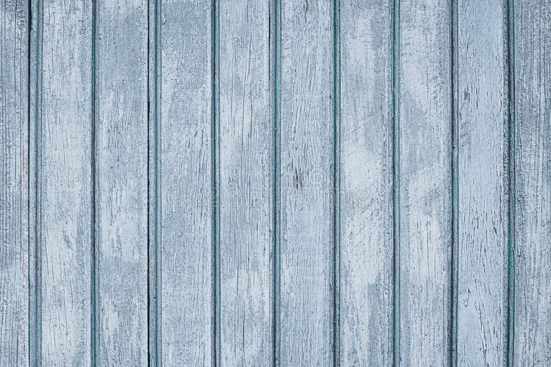 Old shabby fence. Wooden gray boards. Painted wood planks, background. Rustic grain timber texture. Grey wood surface. Dilapidated royalty free stock photo