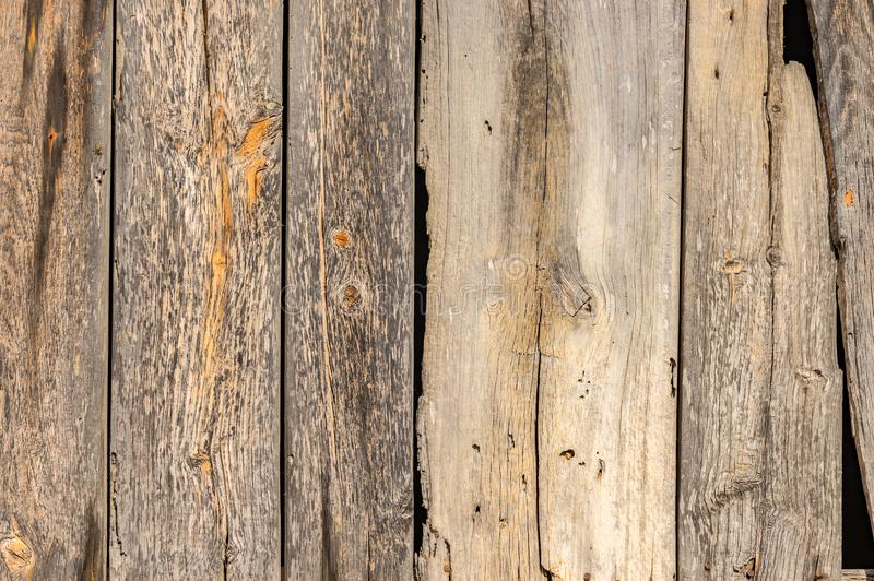 Old shabby gray nature wood boards planks texture royalty free stock images