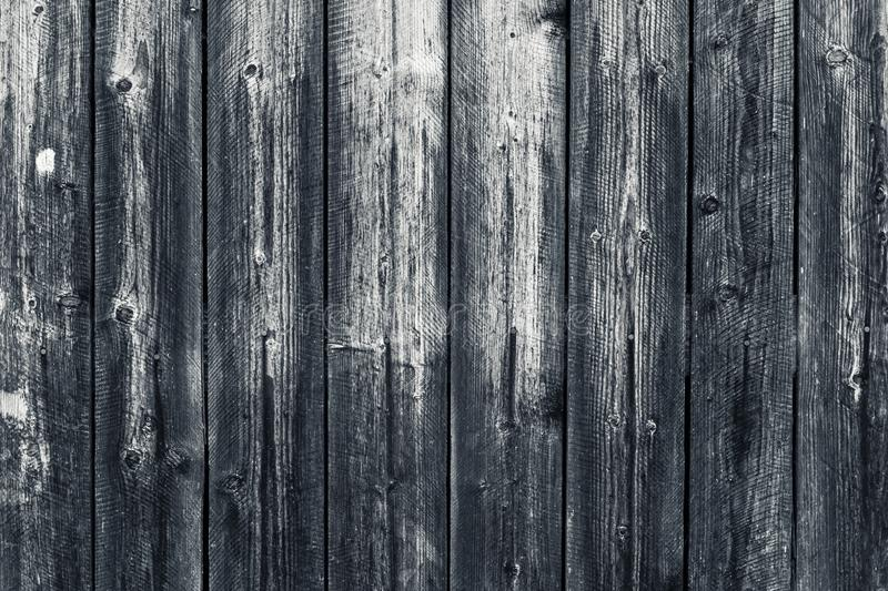 Old shabby wooden gray fence. Grey wood surface. Dilapidated gray wooden boards with hobnail. Grunge wood pattern texture backgrou. Nd, wooden planks. Oak wood stock image