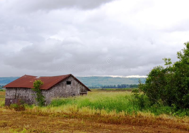 Old shack in a field. Old abandoned shack in a field o n a cloudy and stormy day royalty free stock photos