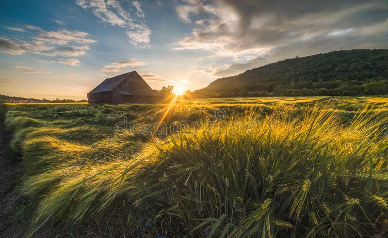Old Shack in the Field. At Sunset stock photos