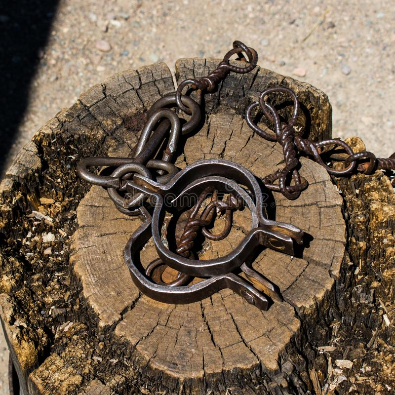 Old shackles on a stump. Old shackles attached to the chain to the log. Photos of old shackles attached to the chain to the log. Old Shackles with metal chain stock photo