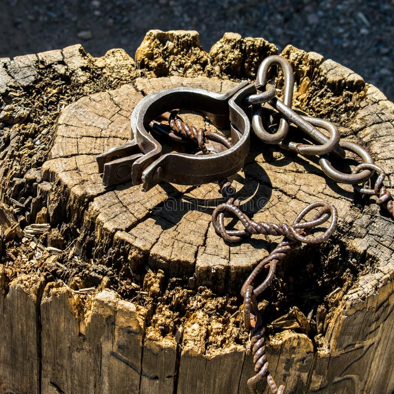 Old shackles on a stump. Old shackles attached to the chain to the log. Photos of old shackles attached to the chain to the log. Old Shackles with metal chain royalty free stock images