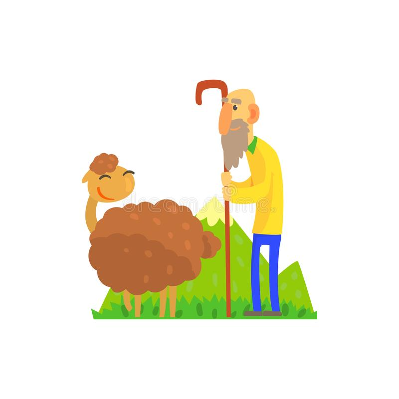 Old shepherd herding sheep on green pasture. Old bearded shepherd herding brown sheep on green pasture. Domestic animal. Cartoon characters. Concept for farming vector illustration