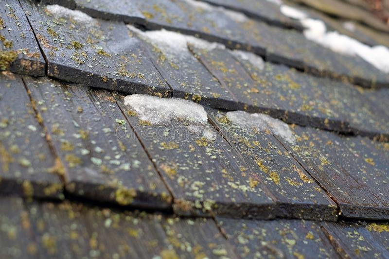 Old shingles wooden roof with moss stock image