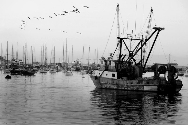Download Old ship in harbor stock image. Image of california, evening - 7021883