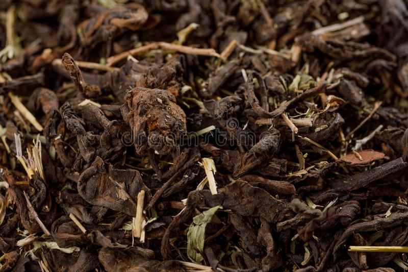 Old Shu Puerh Chinese fermented black tea, top view. Macro photo royalty free stock photos