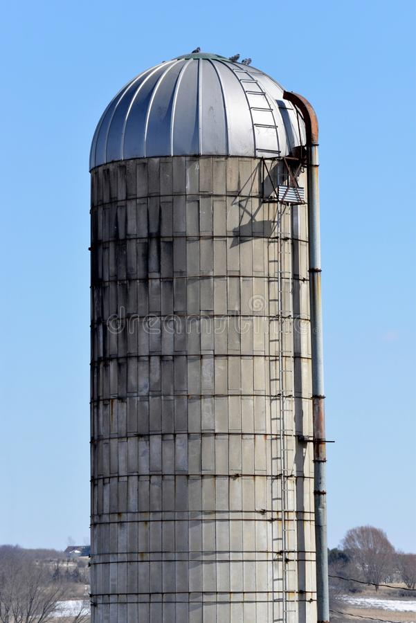 Old silo in southern wisconsin. With metal top ladder and fill tube stock images