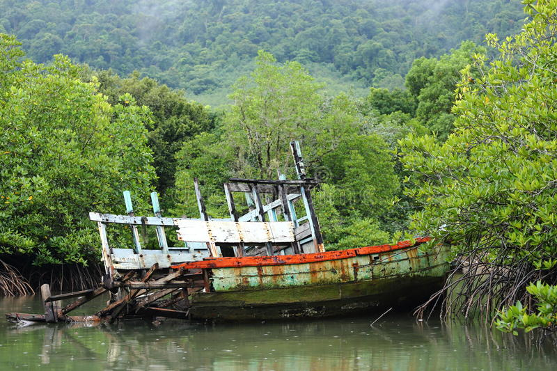 Old Sink fishing boat dock dead along mangrove canal river fores. Vintage Sink Boat and broken in Mangrove forest, rainy day royalty free stock photo