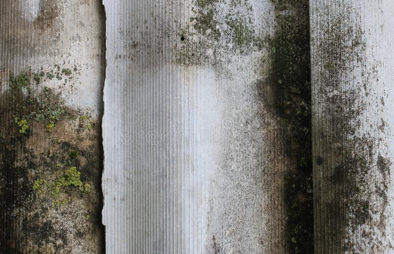 Old slate covered with mold and moss royalty free stock images