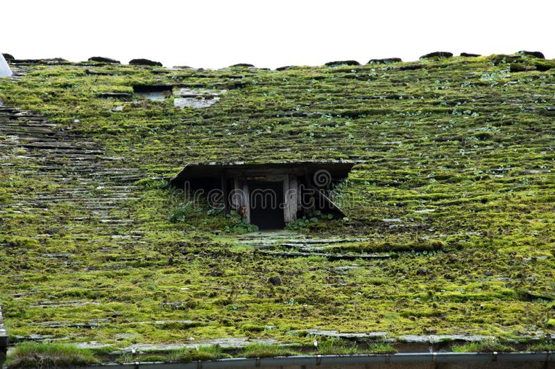 Old slate roof covered in moss. royalty free stock images