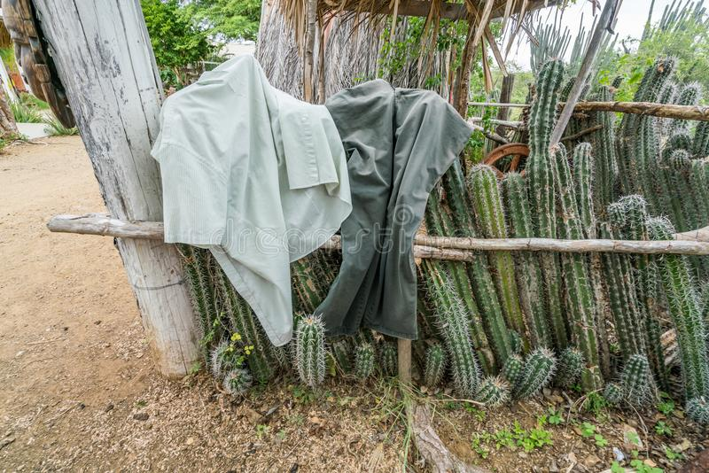An old Slave hut - cactus fence with washing on it royalty free stock image