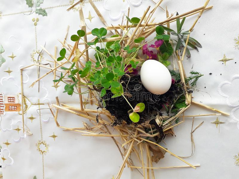 Old Slavic Orthodox pagan ritual of fertility. Preparing to burring Easter egg in the meadow, first row in the field before sowing royalty free stock image