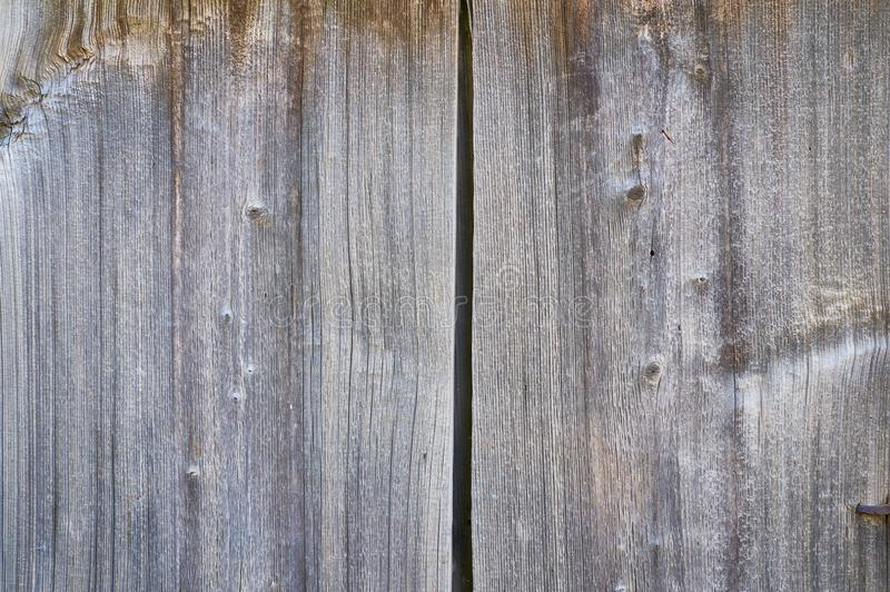 Old Solid Wood Slats Rustic Shabby Gray Background. Rustic wood texture. stock image