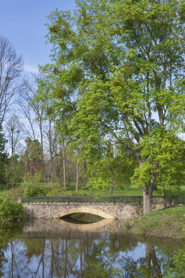 Old spring park with a pond and bridge. Old spring park with a pond and stone bridge stock photo