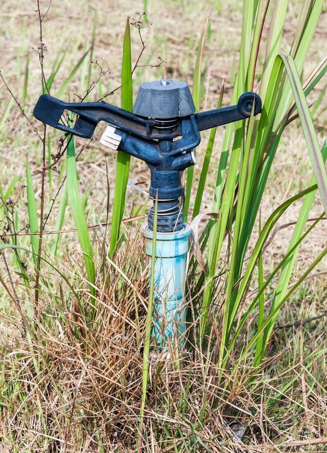 Old sprinkler royalty free stock photo