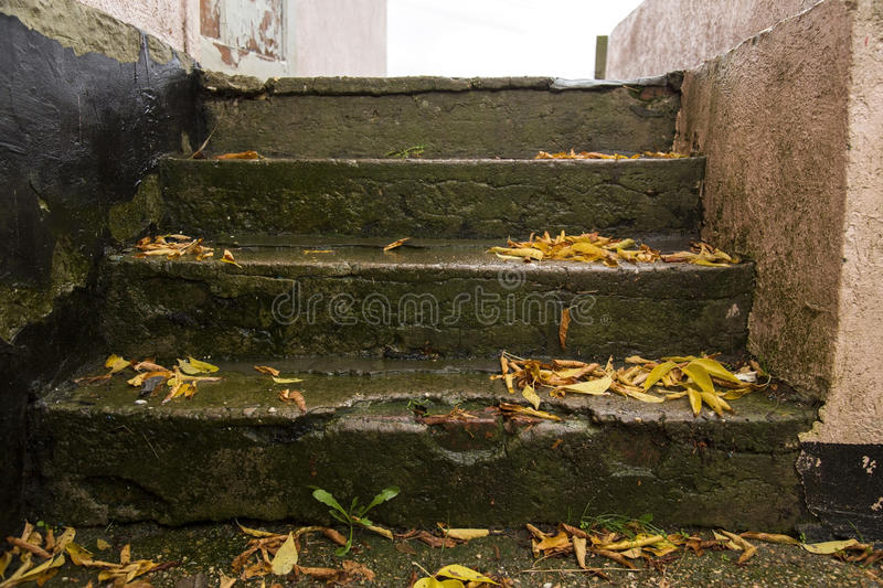 The old stairs royalty free stock image