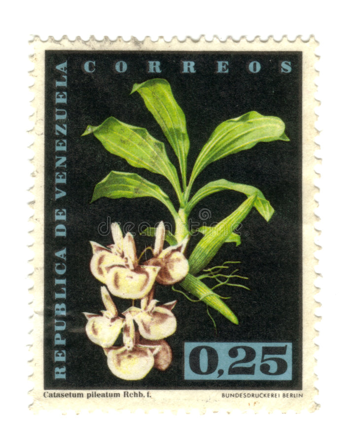 Old stamp from Venezuela. With flower royalty free stock images