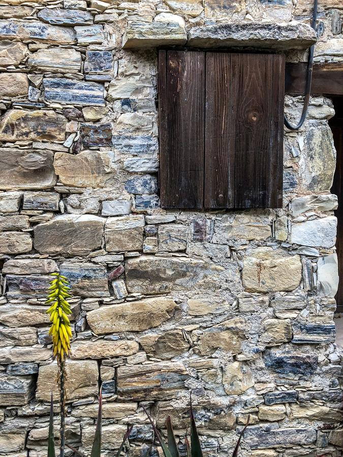Old stone brick wall in Mediterranean style with a wooden closed window. And a yellow blooming flower stock photo