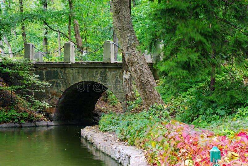 Download Old stone bridge stock photo. Image of calm, plant, historic - 11104188