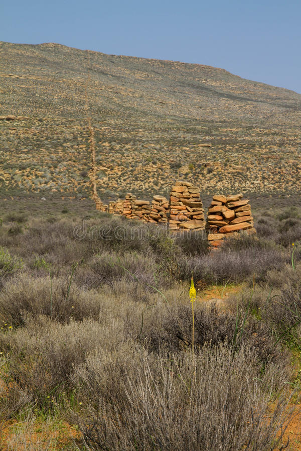 Old stone farm fence in Karoo. South Africa, going over the mountain, with yellow flower blooming in front royalty free stock photography