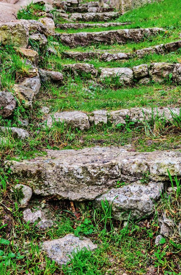 An old stone staircase overgrown royalty free stock photo