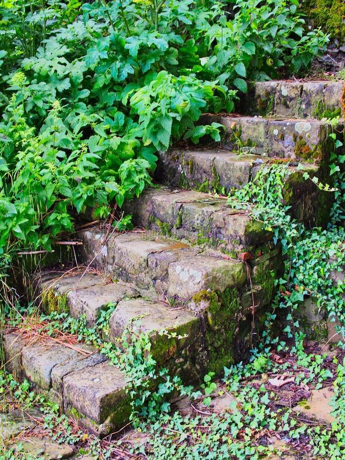 Old Stone Steps in Greek Village, Greece. Old hand built stone steps, with overgrowing weeds, in a Greek mountain village royalty free stock photos