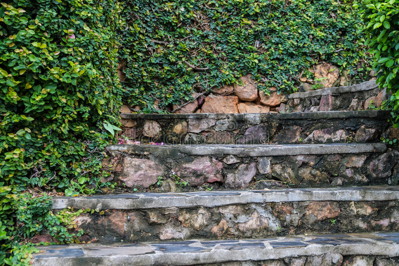 Old stone steps with greenery growing stock images