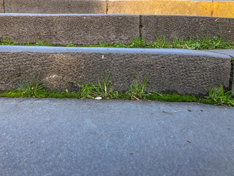 Old stone steps overgrown with grass, the rise of the suspension bridge stock photography