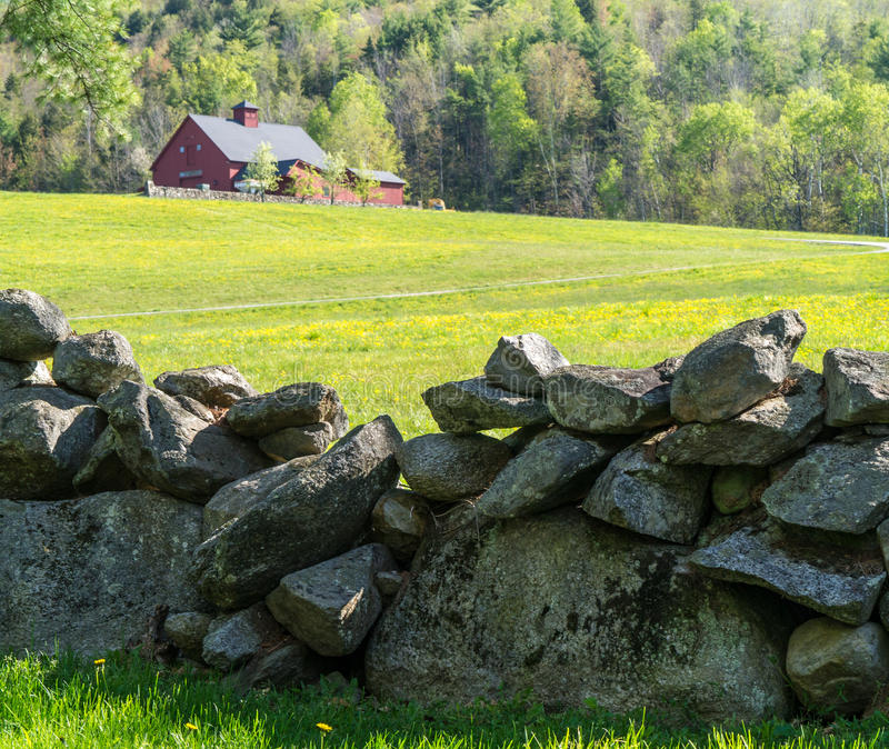 Old Stone Wall. An old New England stone wall traditionally marked farm boundariies. Made from stones found while tilling fields in this rocking landscape. Red royalty free stock photography